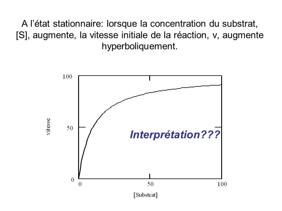 A l'état stationnaire: lorsque la concentration du substrat, [S], augmente, la vitesse initiale de la réaction, v, augmente hyperboliquement.